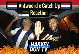 Harvey Don TV – Catch up – Joslvio x Antwoord – Boef // Reaction