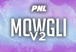 PNL (Ademo) – Mowgli II English lyrics
