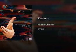 KALASH CRIMINEL – T'es mort (English lyrics)
