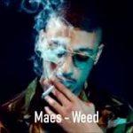 MAES – Weed (English lyrics)